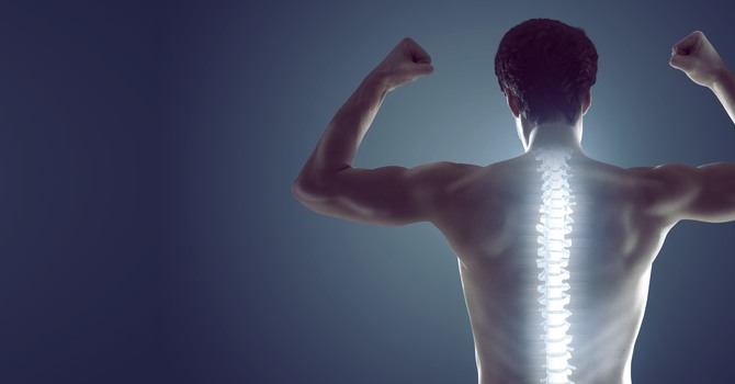 Disc Injuries and Disc Herniations