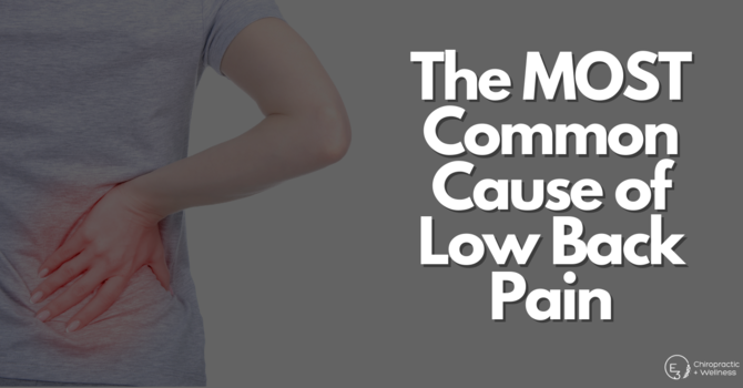 The Most Common Cause of Low Back Pain  image