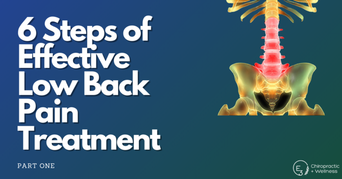 The 6 Steps of Effective Low Back Pain Treatment: Part One  image