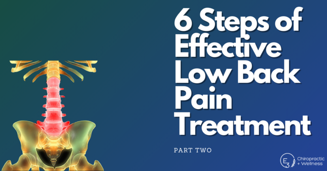 The 6 Steps of Effective Low Back Pain Treatment: Part Two image